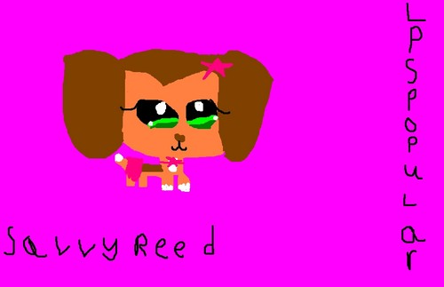 my LPS i deaw (: