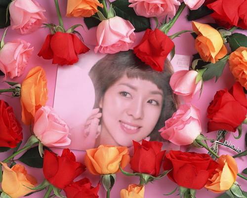 rose dara