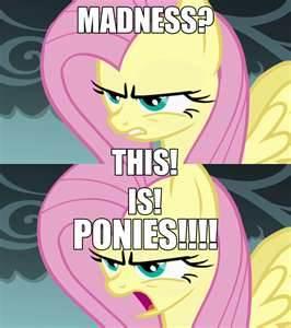 this is ponies!