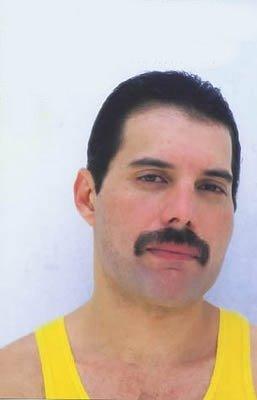 ~ Freddie ~