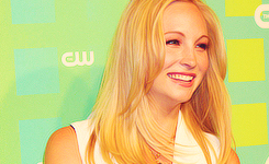 Candice Accola wallpaper containing a portrait entitled » candice accola «