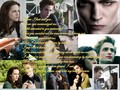 A Dangerous but True Love Story 1 - twilight-series wallpaper