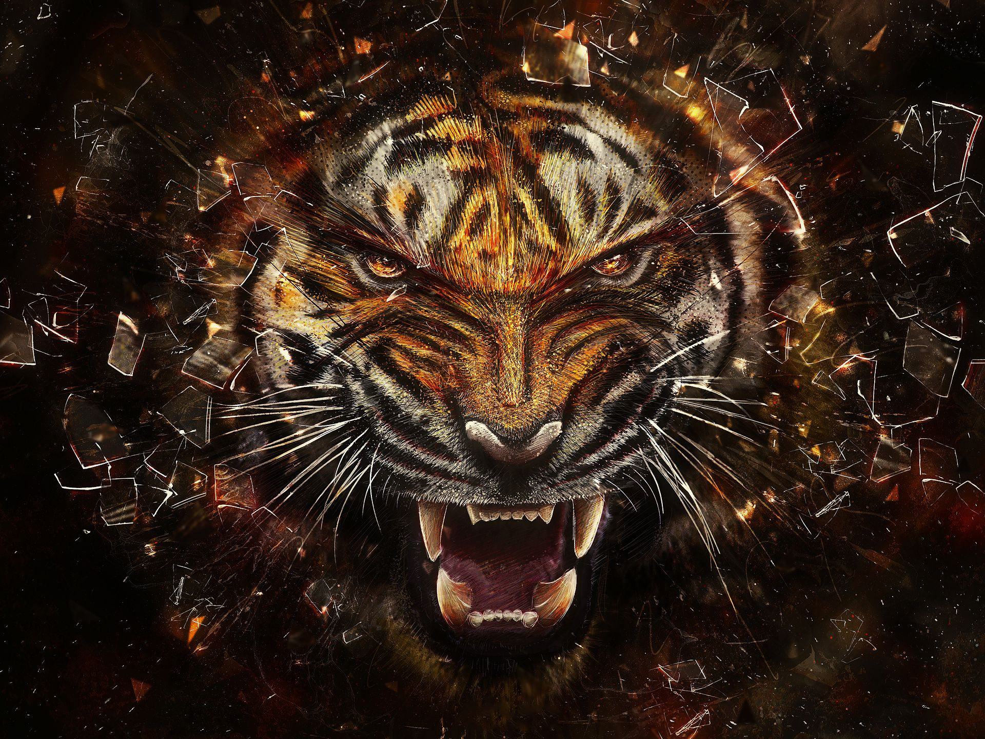 Tigers Images Angry Tiger Hd Wallpaper And Background Photos 31737545
