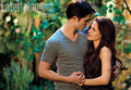 BD Part II - twilight-series photo