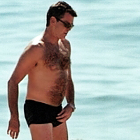 Nude pics of pierce brosnan useful message
