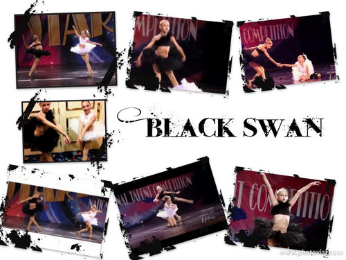 Black angsa, swan collage