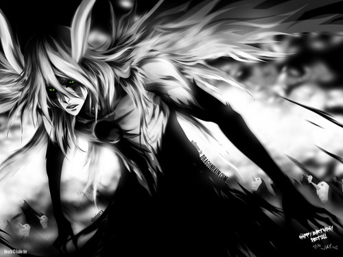 Bleach - bleach-anime Photo