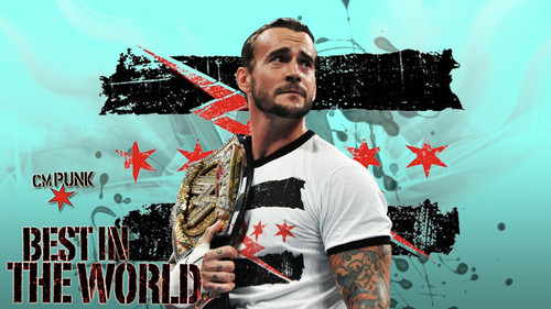 CM Punk WWE Championship - wwe Photo