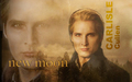 Carlisle Cullen - twilighters wallpaper