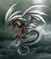 Dark Dragons - griffins-and-dragons photo