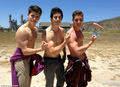David H. - david-henrie photo