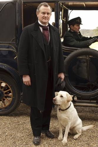 Downton Abbey kertas dinding probably with a labrador retriever called Downton Abbey Season 1