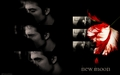 Edward &amp; Bella NM - twilighters wallpaper