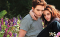 Edward and Bella new still in Breaking Dawn part 2