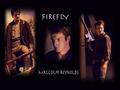 Firefly - firefly wallpaper