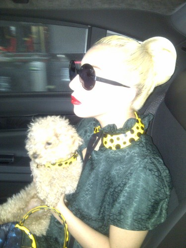 Gaga with mashabiki outside her hotel in Sofia, Bulgaria (Aug. 12)
