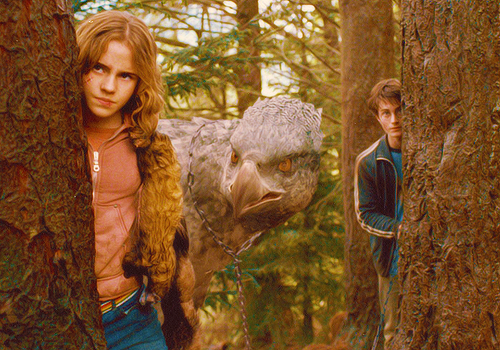 Harry, Hermione, and Buckbeak - harry-and-hermione Photo