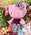 Helloo Kitty things - sanrio photo