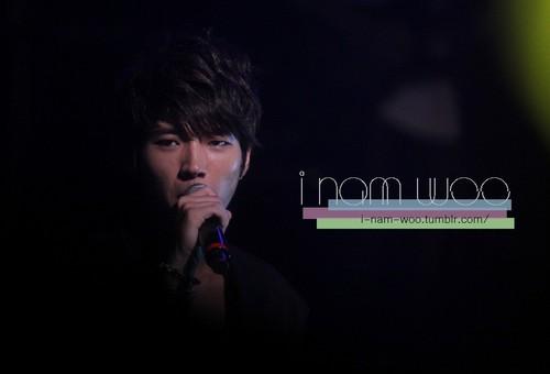 Infinite – That Summer 음악회, 콘서트