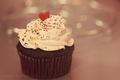 Lovely Cupcake