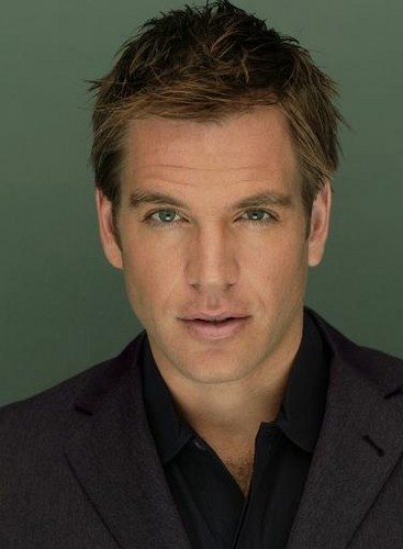 Michael Weatherly wallpaper with a business suit called Michael Weatherly