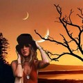 Moonlight Stevie - stevie-nicks photo