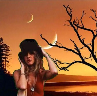 Moonlight Stevie