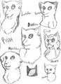 My Rubyclan Cats