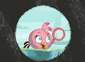 berwarna merah muda, merah muda Bird