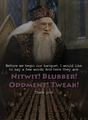 Professor Dumbledore - albus-dumbledore fan art
