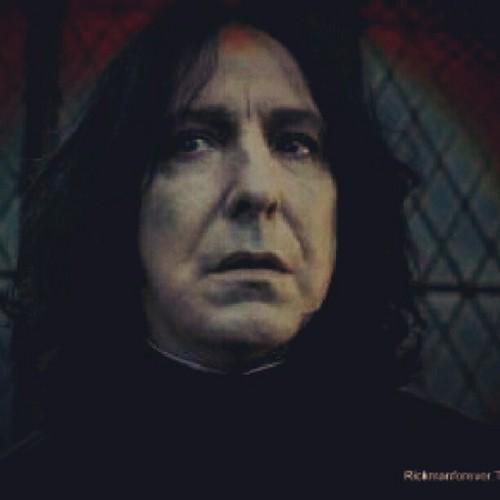 Severus my 爱情 .