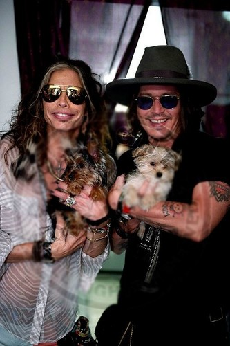 Steven Tyler, Johnny Depp and Steven's 子犬