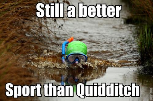 Still a better sport than Quidditch