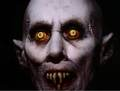 THE MASTER FROM SALEMS LOT  - horror-movies photo
