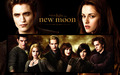 The Cullen Family - twilighters wallpaper