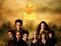 The Cullens - twilighters wallpaper