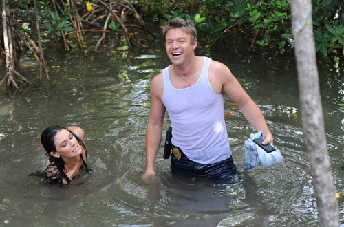 The Glades wallpaper possibly containing a bather and a hunk titled The Glades 3x09 {Islandia}