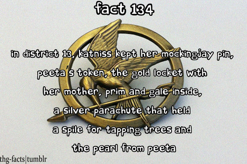 The Hunger Games facts 121-140 - the-hunger-games Fan Art