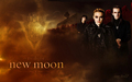 The Volturi - twilighters wallpaper