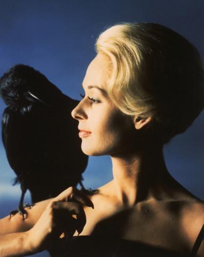 Tippi Hendren 'The Birds' 1963