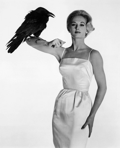 Tippi Hendren 'The Birds' 1963