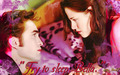 Try To Sleep Bella - twilighters wallpaper