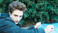 Twilight Saga 2008 Stills - twilight-series photo