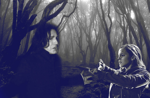 Severus snape and hermione granger love story