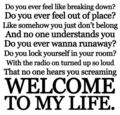 Welcome To My Life lyrics