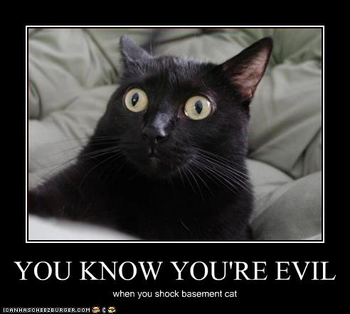 You KNOW You're Evil...