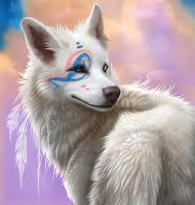beatiful serigala, wolf