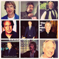 collage of Alan Rickman - alan-rickman fan art
