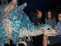 dragon cosplay - dragons photo