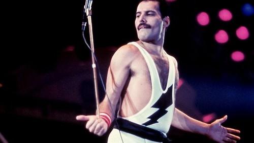 lovely King Freddie